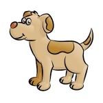Conseils pour appeler votre chien
