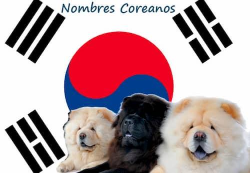 Nom de chien coréen