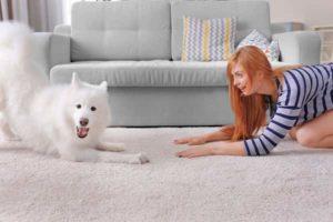 femme-avec-son-chien-aux-cheveux-blancs